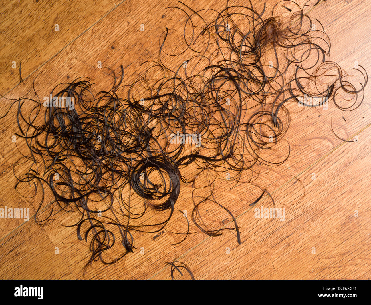 Hair clippings on a hairdressers floor. A womans cut brown hair on the floor of a hairdressing salon. - Stock Image