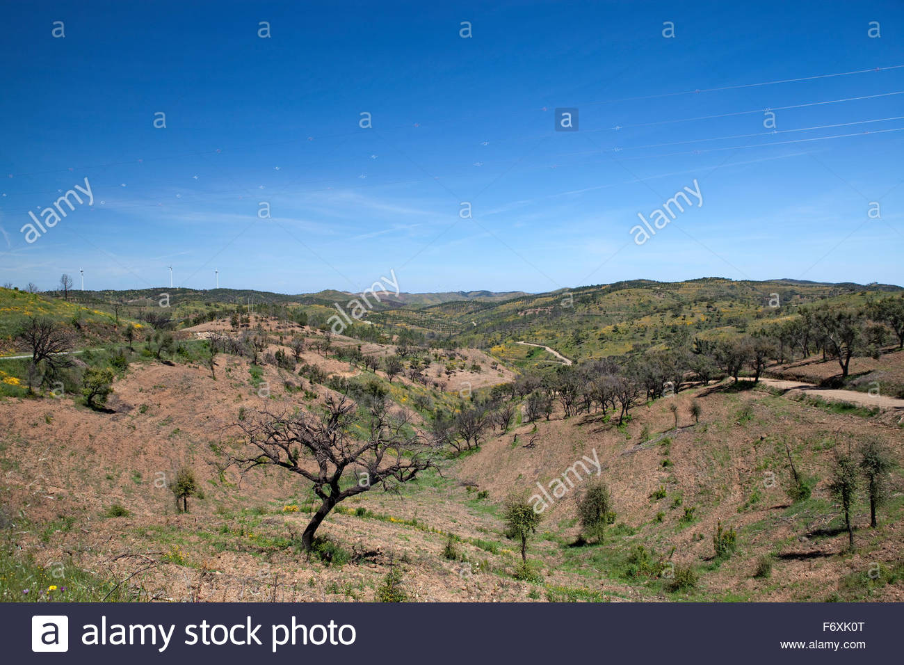 The hills of Portugal - Stock Image