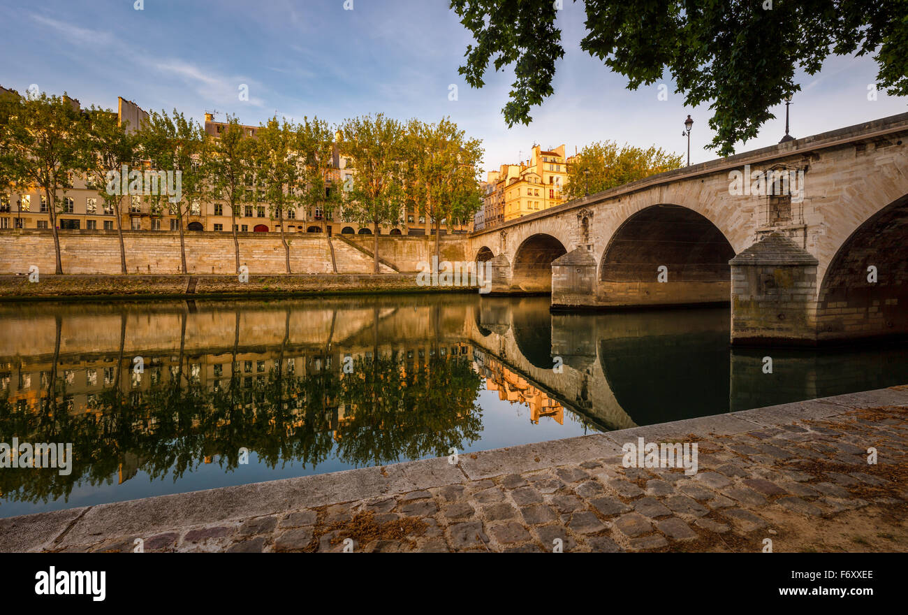 Early summer morning on Ile Saint Louis. Aspen trees lining the Seine river bank by Pont Marie and Quai d'Anjou - Stock Image