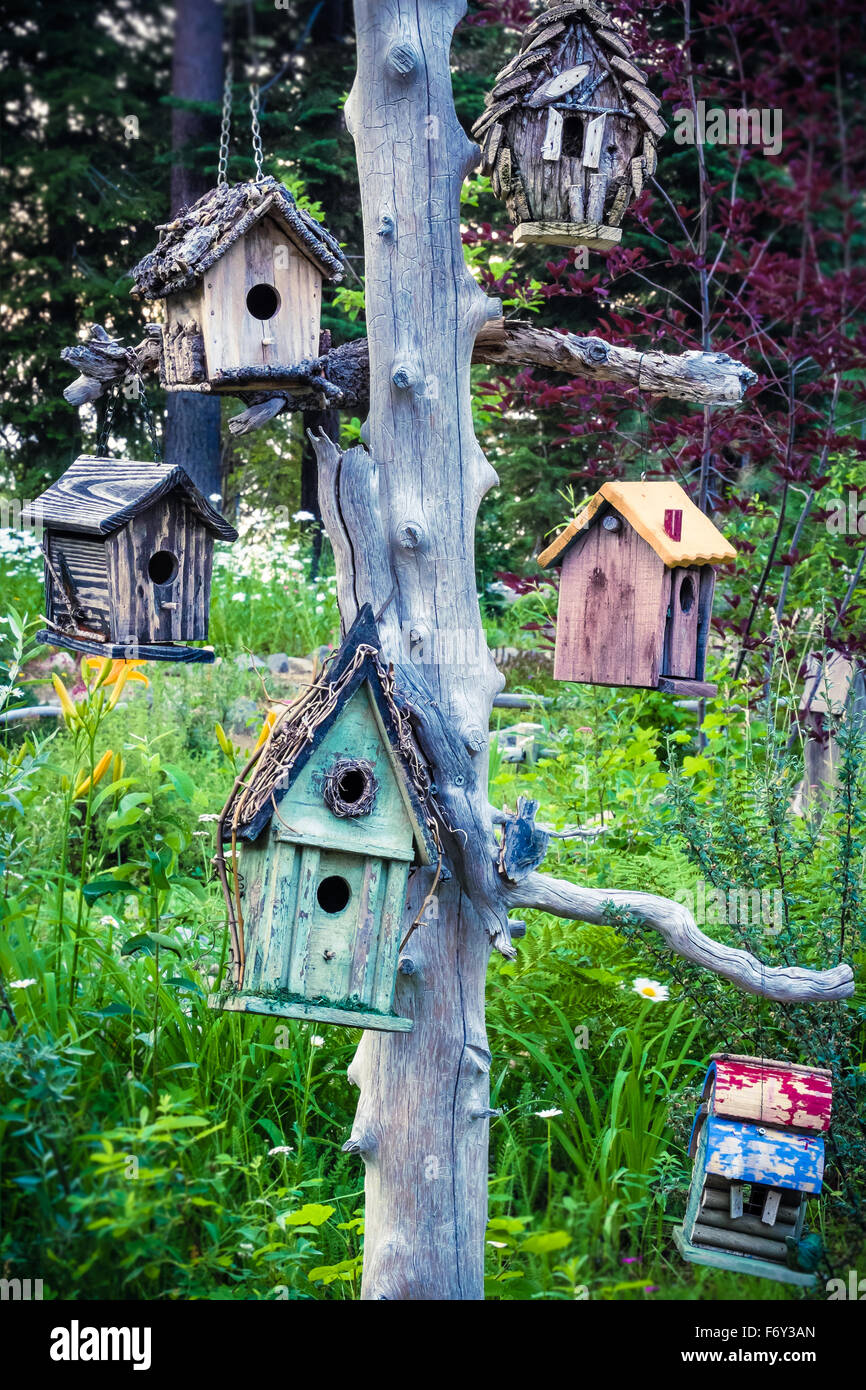 An assortment of different birdhouses hang from a tree in a garden ...