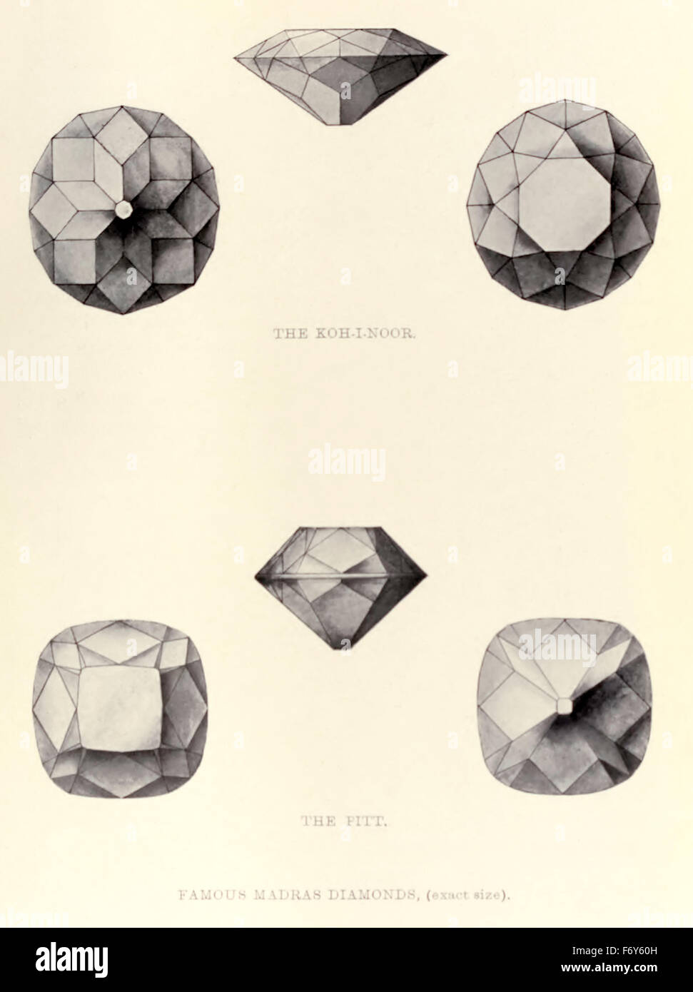 Drawings of 'The Koh-i-Noor' and 'The Pitt' Madras diamonds sketched by Dr Max Bauer from his book - Stock Image