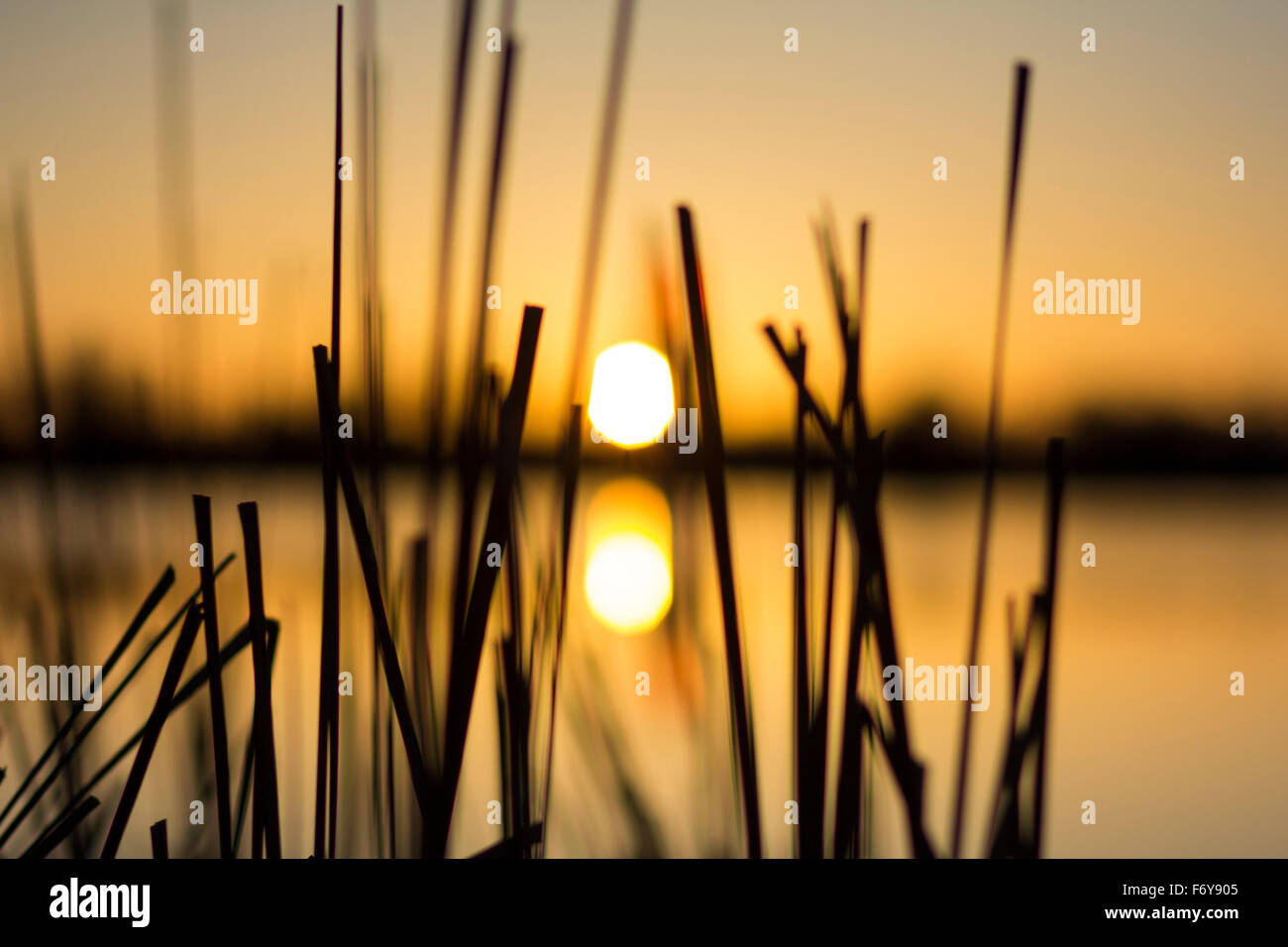 close up picture of a sunrise over a lake in Colorado - Stock Image
