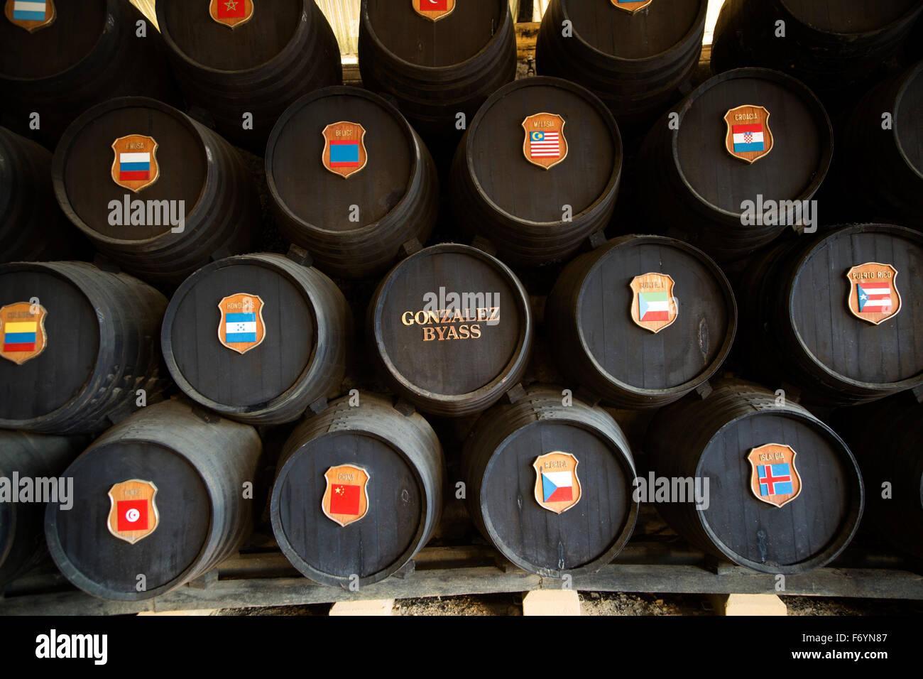 Oak barrels with national symbols of countries exported to from Gonzalez Byass bodega, Jerez de la Frontera, Spain - Stock Image