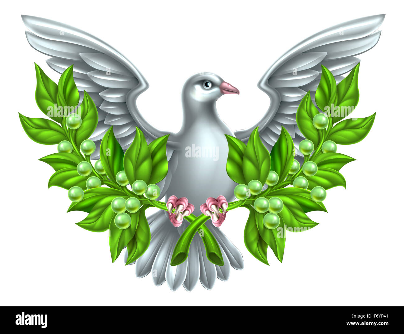 Dove holding crossed olive branches, a symbol of peace - Stock Image