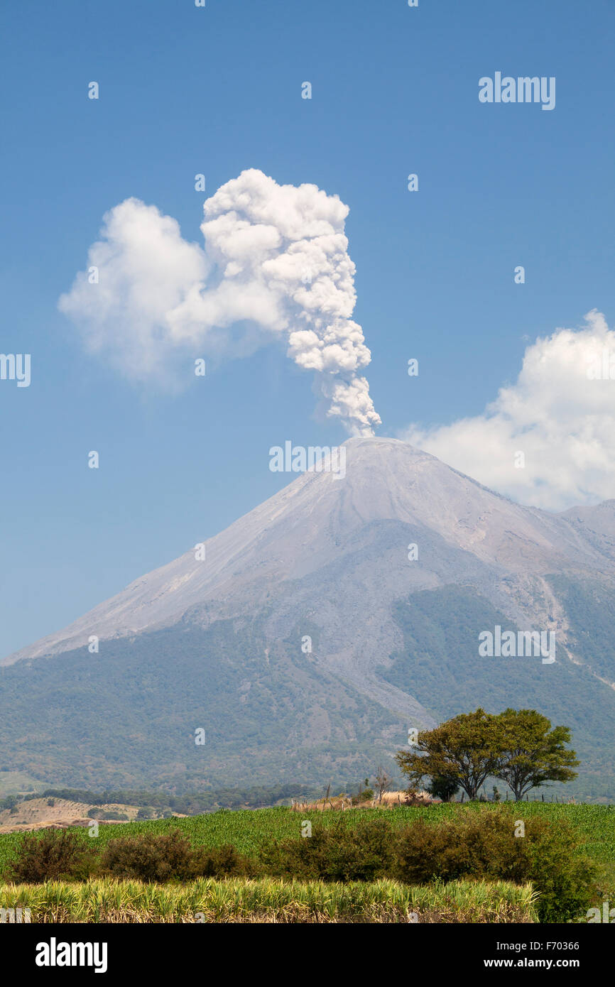 The Colima volcano or Volcan de Fuego erupts over fields of sugar cane and corn in Colima, Mexico. - Stock Image