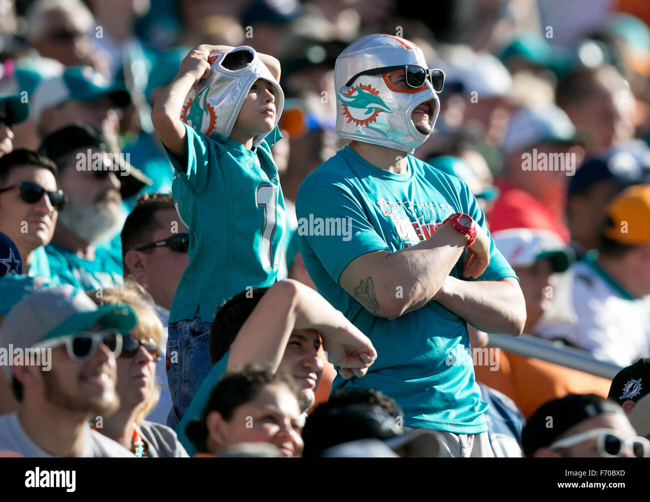 1a127b60 Dolphins Fans Stock Photos & Dolphins Fans Stock Images - Alamy