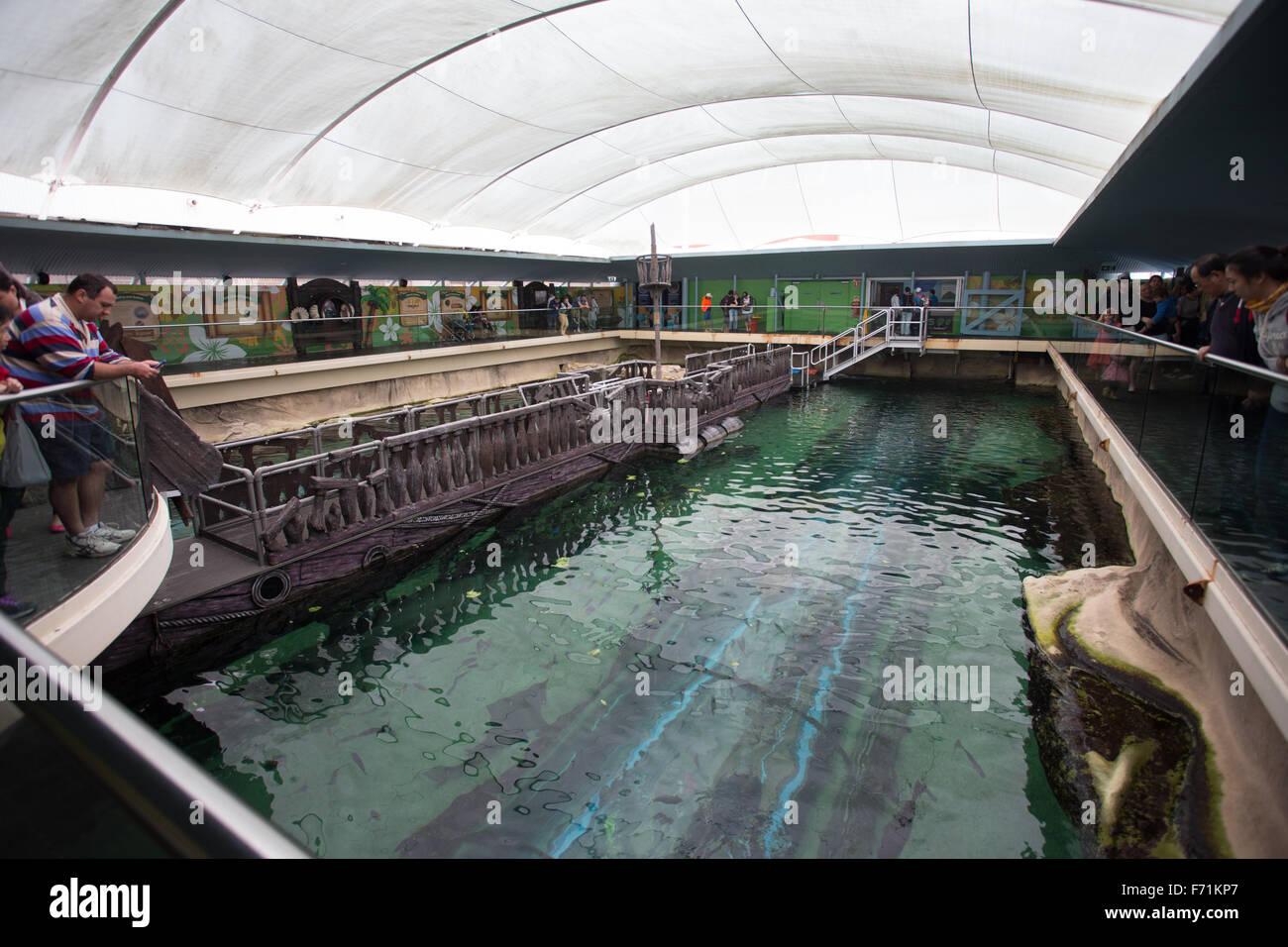 sea life sydney aquarium - Stock Image