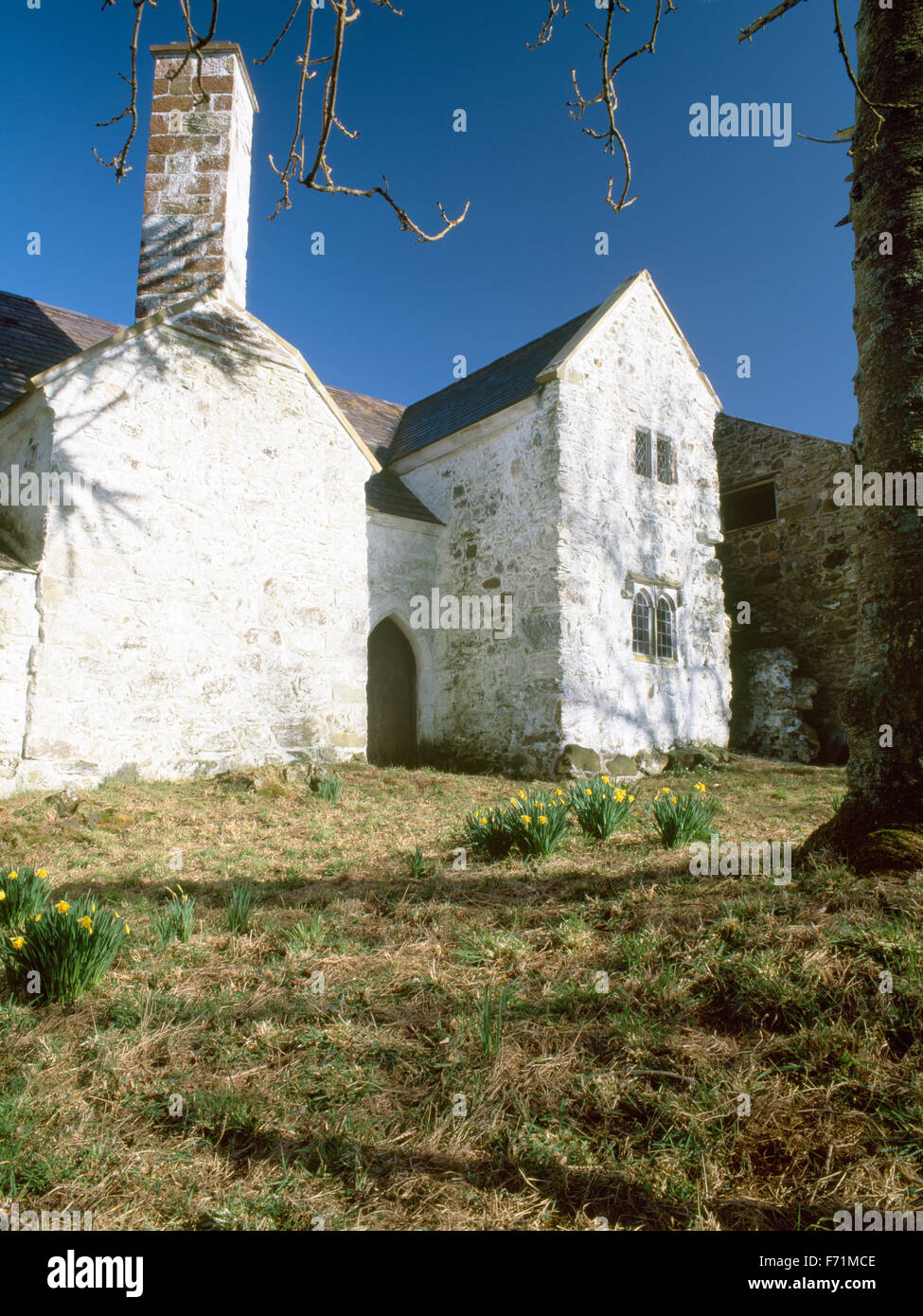 Hafoty Tudor hall house, Llansadwrn, Anglesey, North Wales, UK - Stock Image