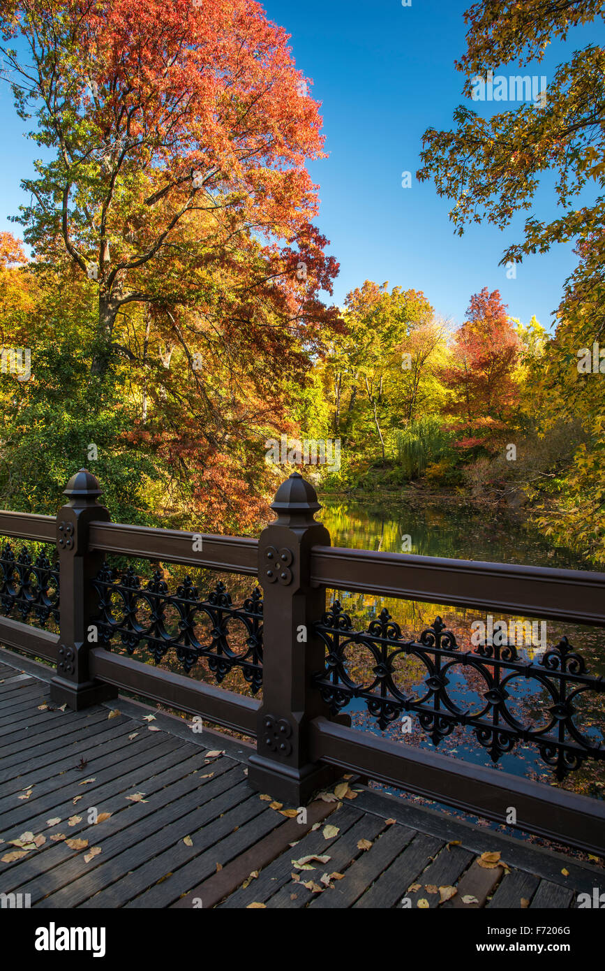Fall foliage at Central Park, Manhattan, New York, USA - Stock Image