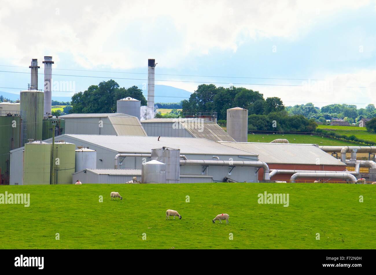 Penrith, Cumbria, England. Alba Protein Penrith Ltd animal rendering plant, source of the Penrith Pong. - Stock Image