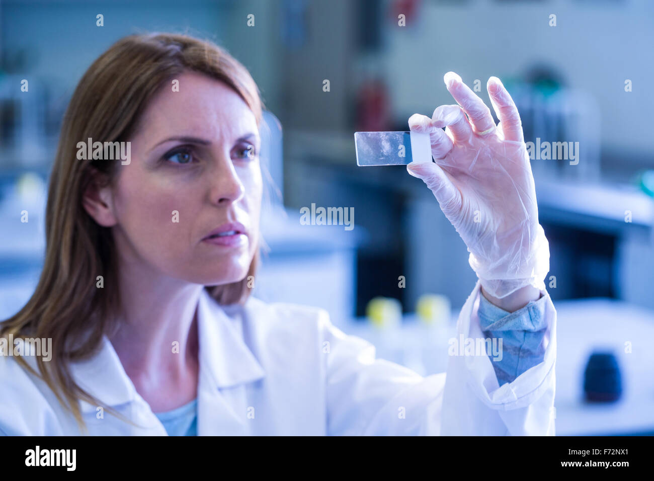 Scientist looking at test slide in the lab - Stock Image