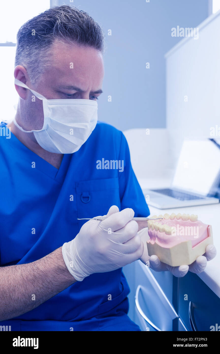 Dentist holding mouth model and dental tool - Stock Image