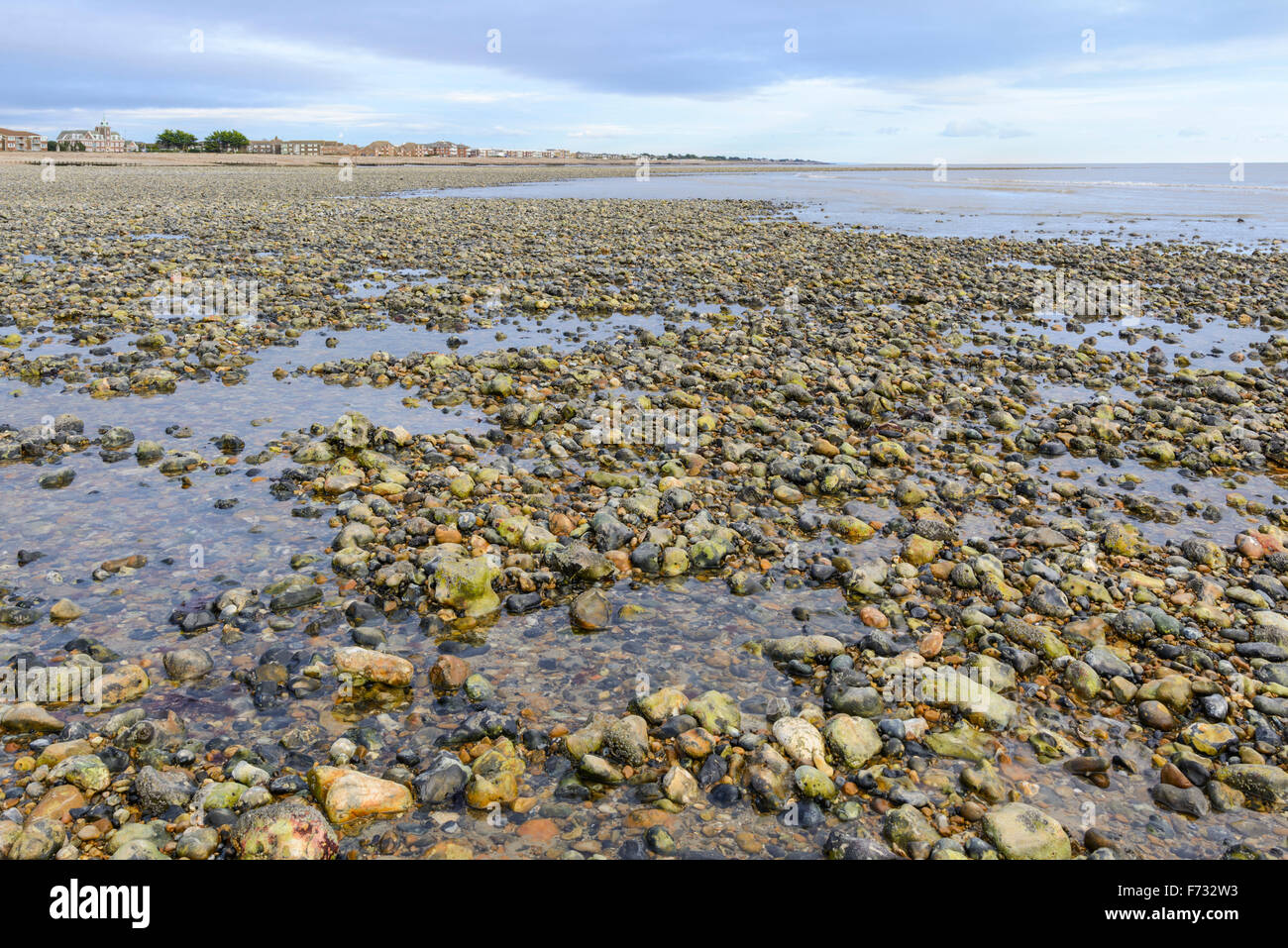 Deserted shingle beach at low tide in the UK. - Stock Image