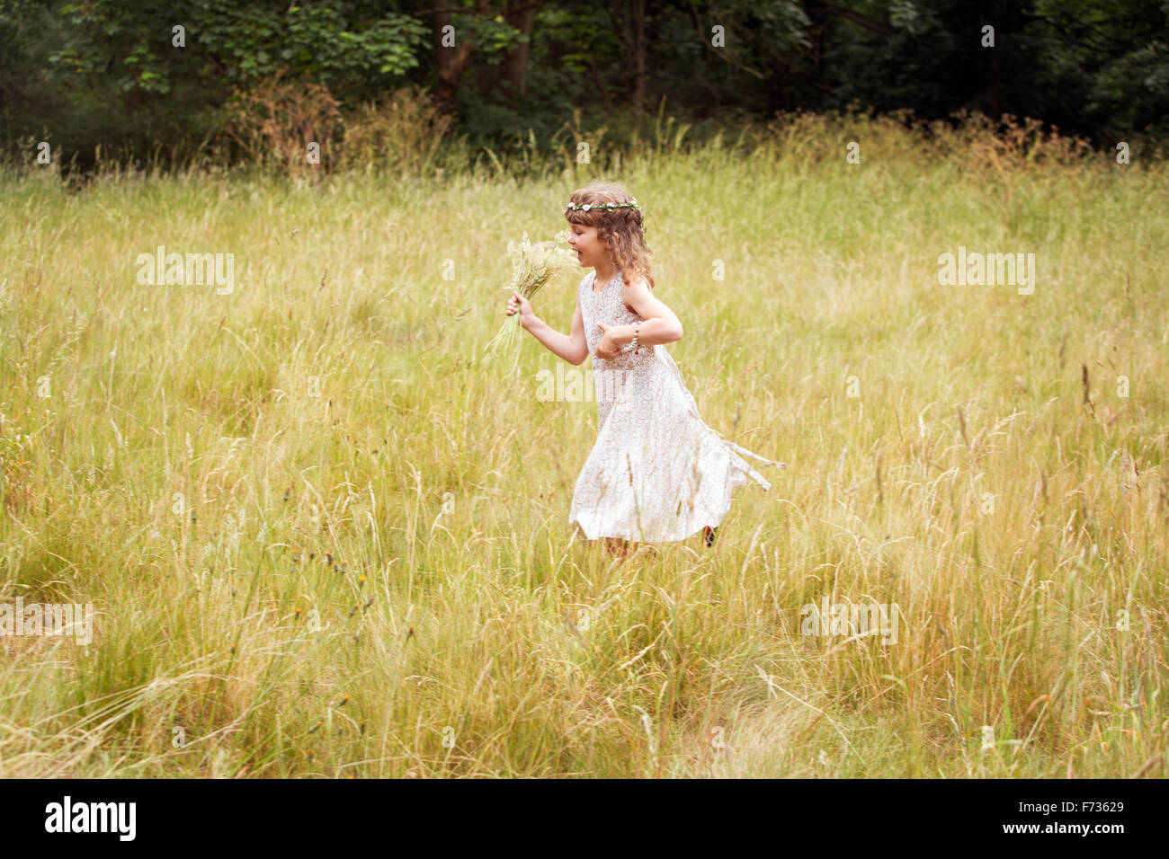 Young girl with flowers in her hair picking wild flowers in a meadow. Stock Photo