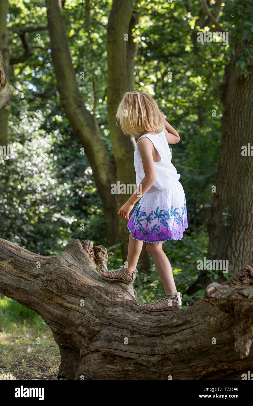 Young girl balancing on a tree in a forest. - Stock Image