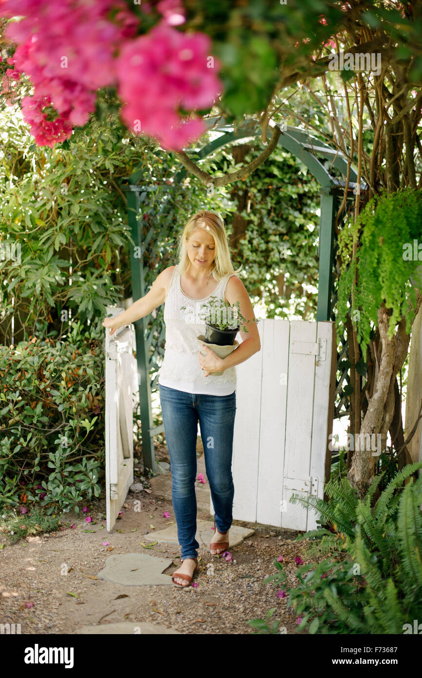 Blond woman entering a garden through a white wooden gate, carrying a plant pot. - Stock Image