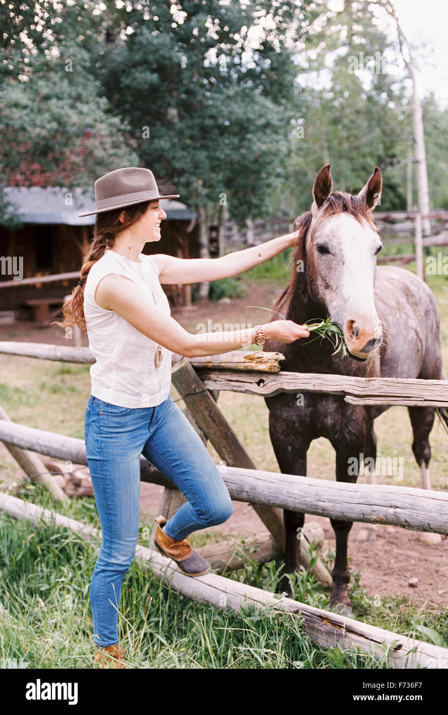 Woman feeding a horse in a paddock on a ranch. - Stock Image