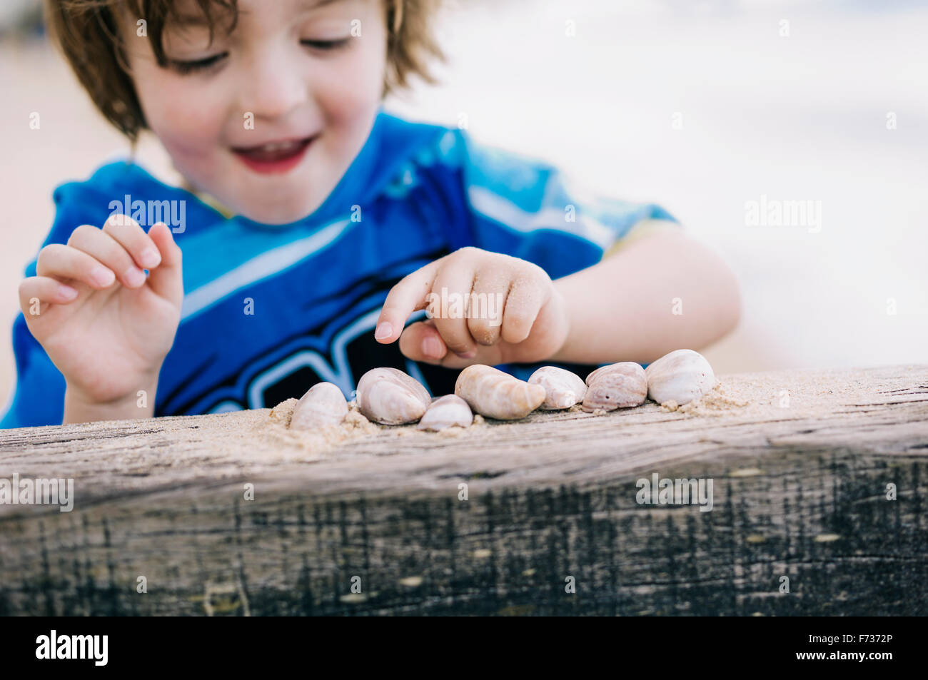 A boy at the beach counting shells lined up on a breakwater. - Stock Image