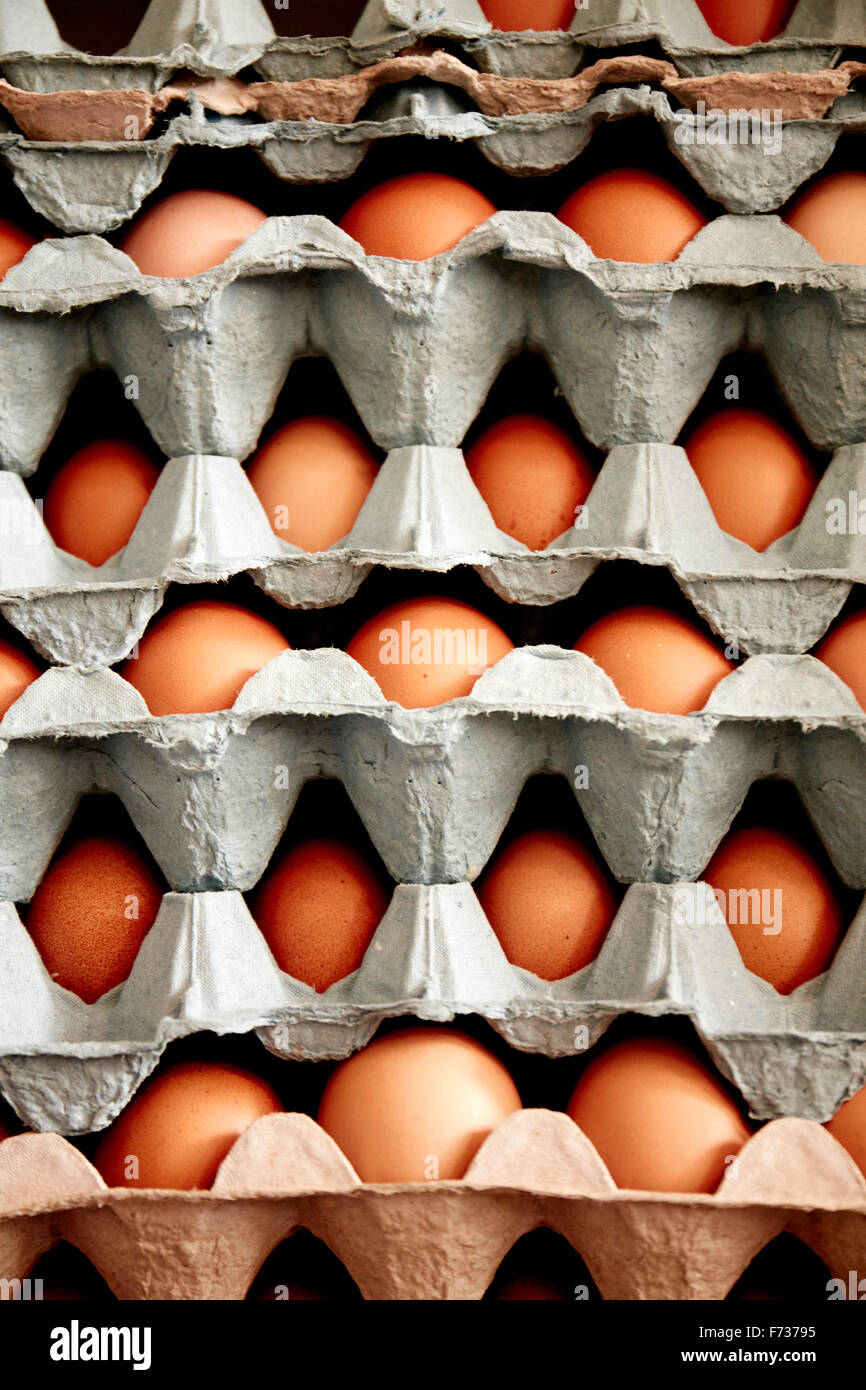 Trays of organic free range hen's eggs stacked up, with eggs of different sizes and colours. - Stock Image