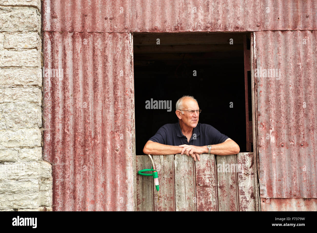 A farmer leaning on a half door looking out of a farm building. - Stock Image