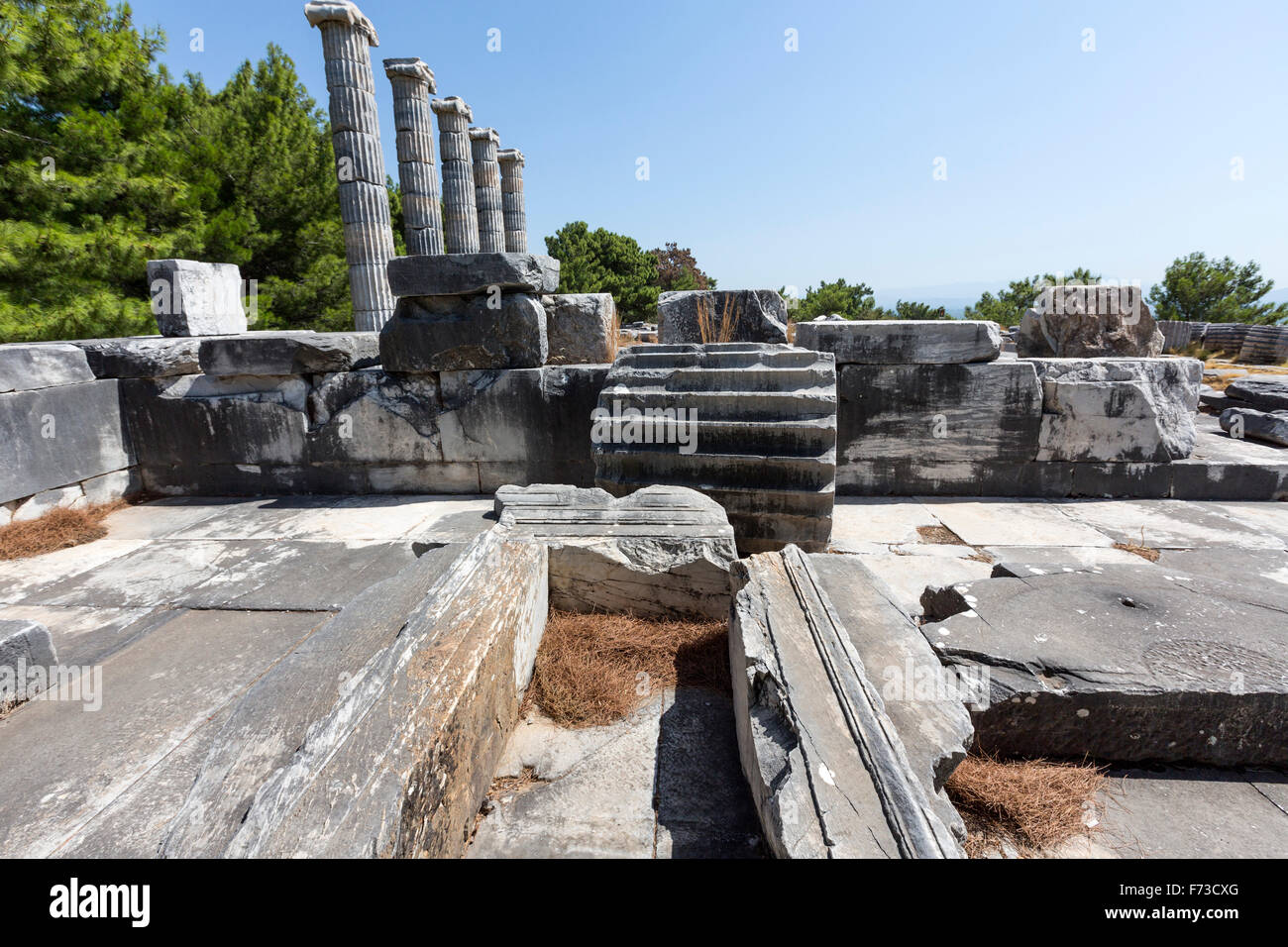 Ionic columns of the Temple of Athena. Priene an ancient Greek city of Ionia at the base of an escarpment of Mycale. - Stock Image