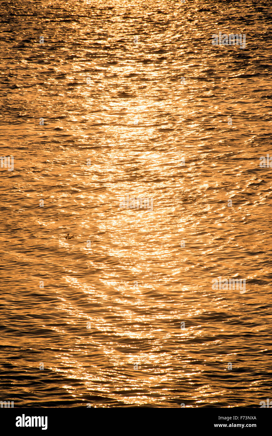 Golden sparkling water, maharashtra, india, asia - Stock Image