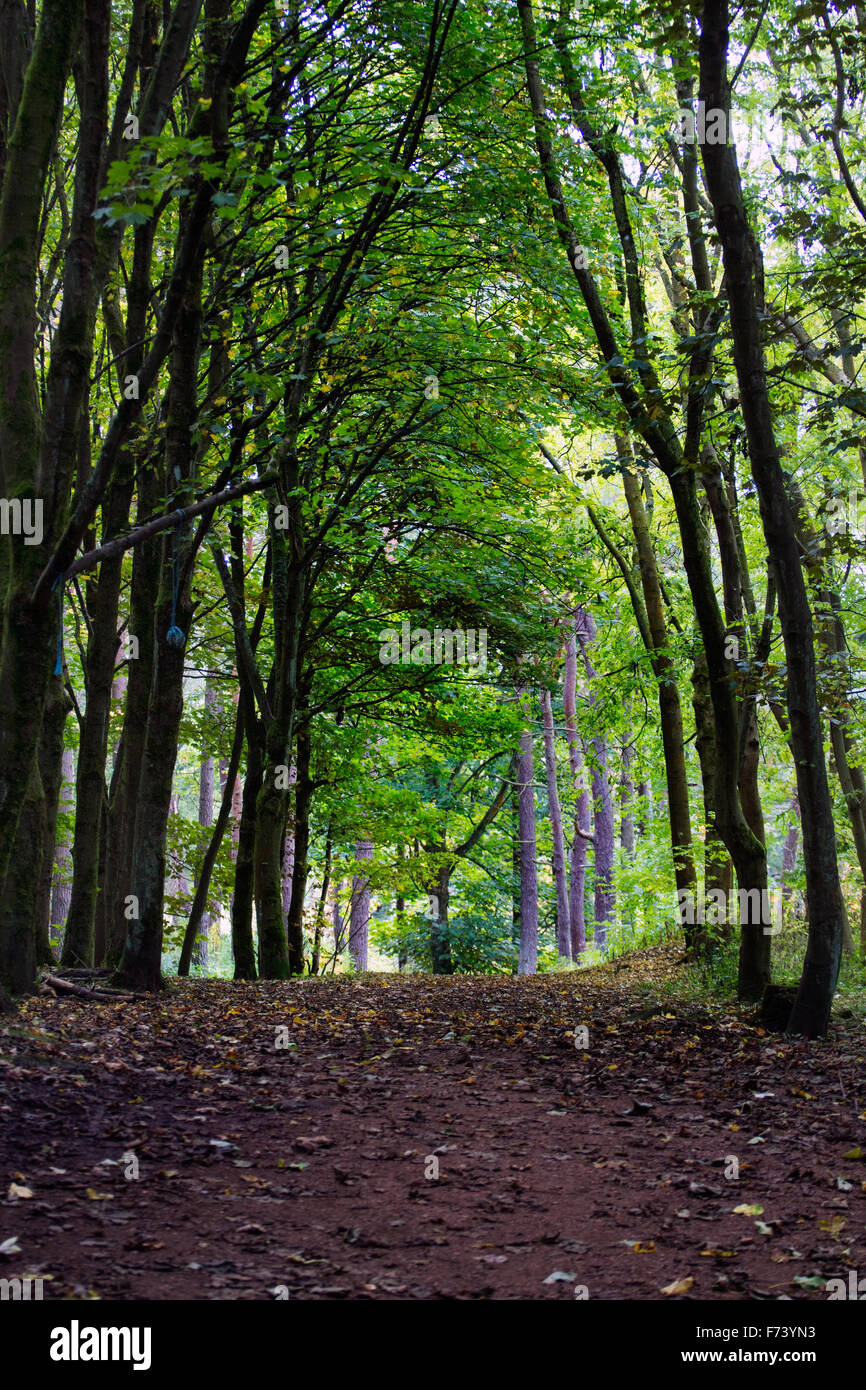 One of the paths around Dechmont Law in Livingston. - Stock Image