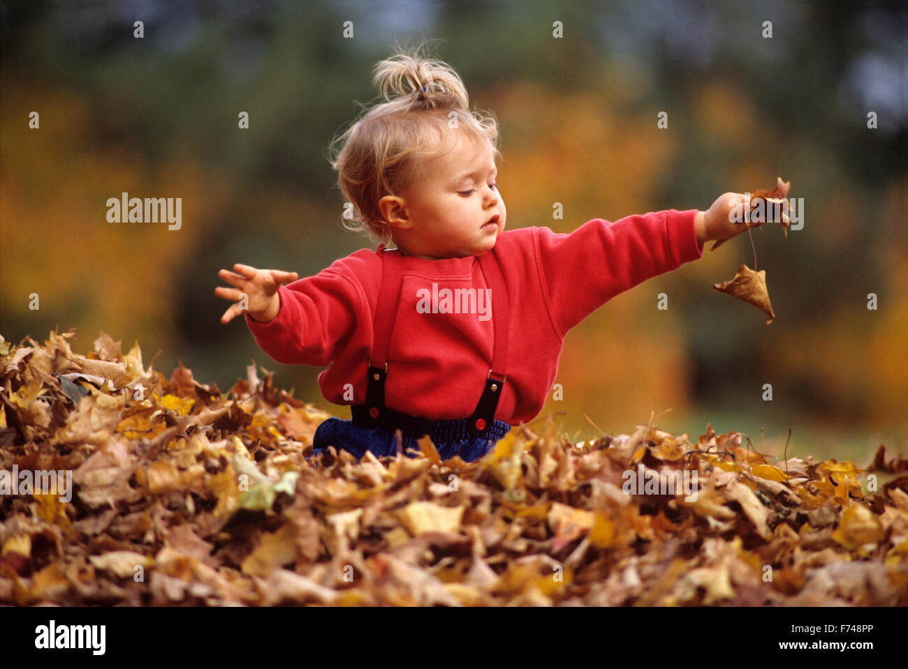 child playing in leaves holding leaf - Stock Image