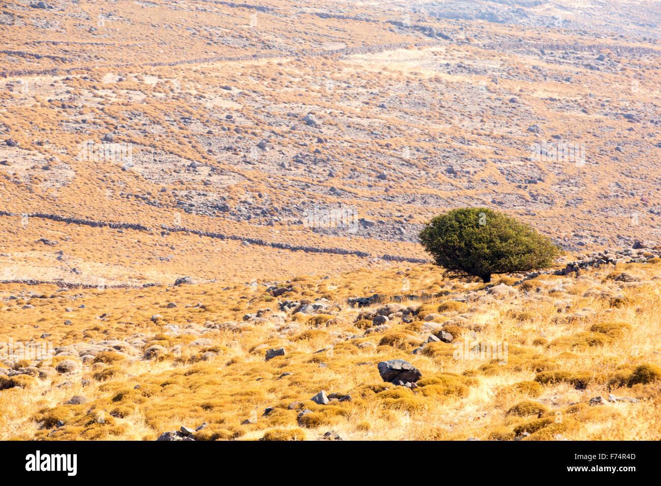 Barren rocky hillsides with sparce thorny vegetation on Western Lesvos above Skala Eresou, Lesvos, Greece. Stock Photo