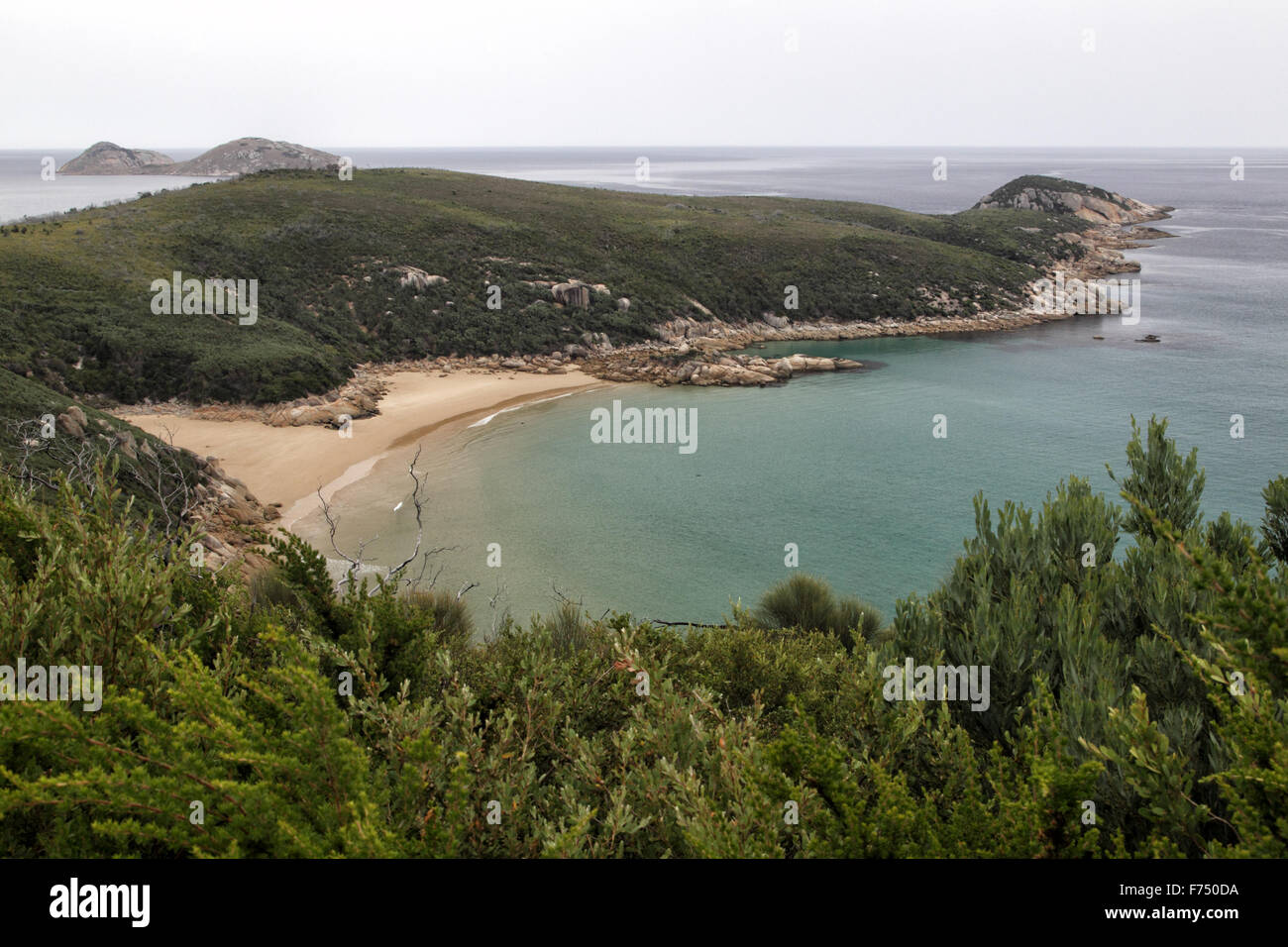 Coastal Landscape on the Tounge Point Track in the Wilsons Promontory National Park, Victoria, Australia. - Stock Image