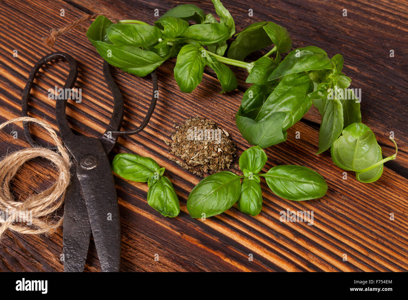 Aromatic culinary herbs, basil. Fresh and dry basil herb with vintage scissors on rustic wooden background. Stock Photo