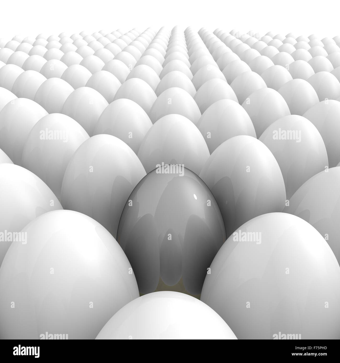 Eggs All Over - And a Single Grey One - Stock Image