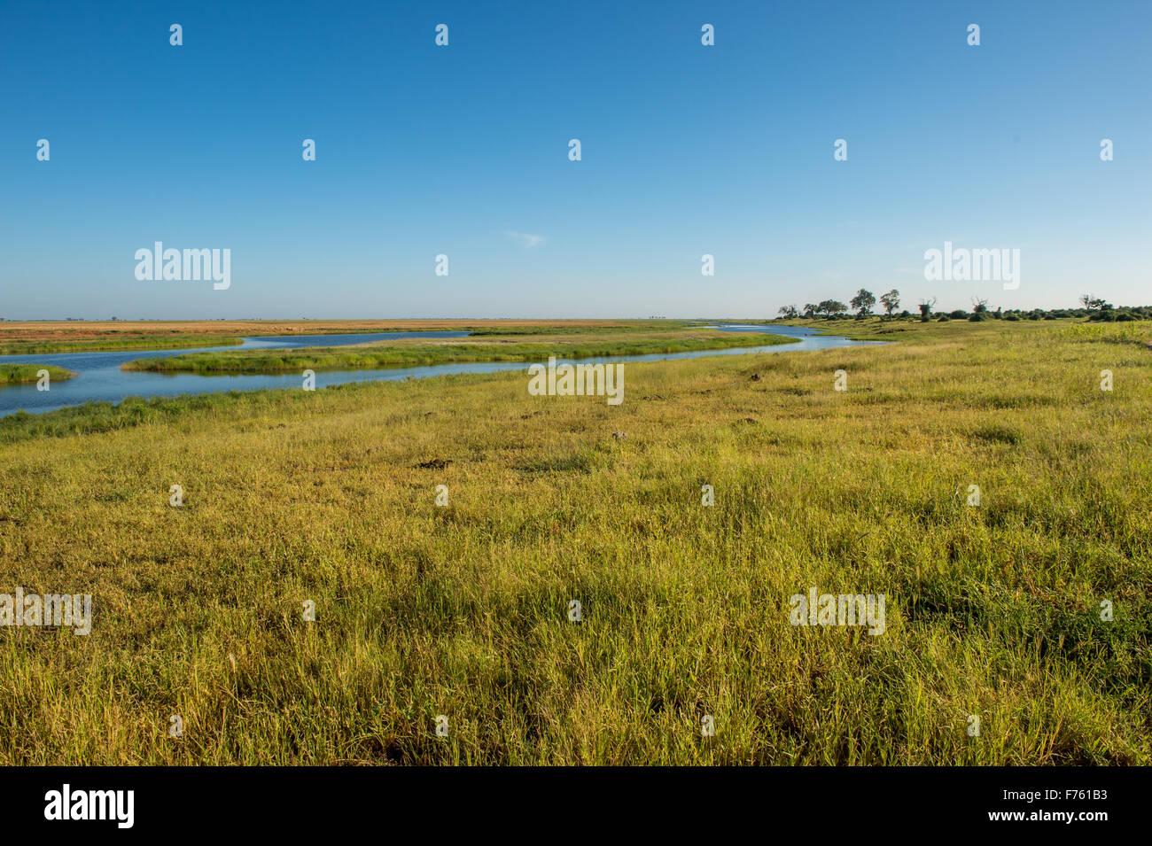 Kasane, Botswana - Chobe National Park - Stock Image