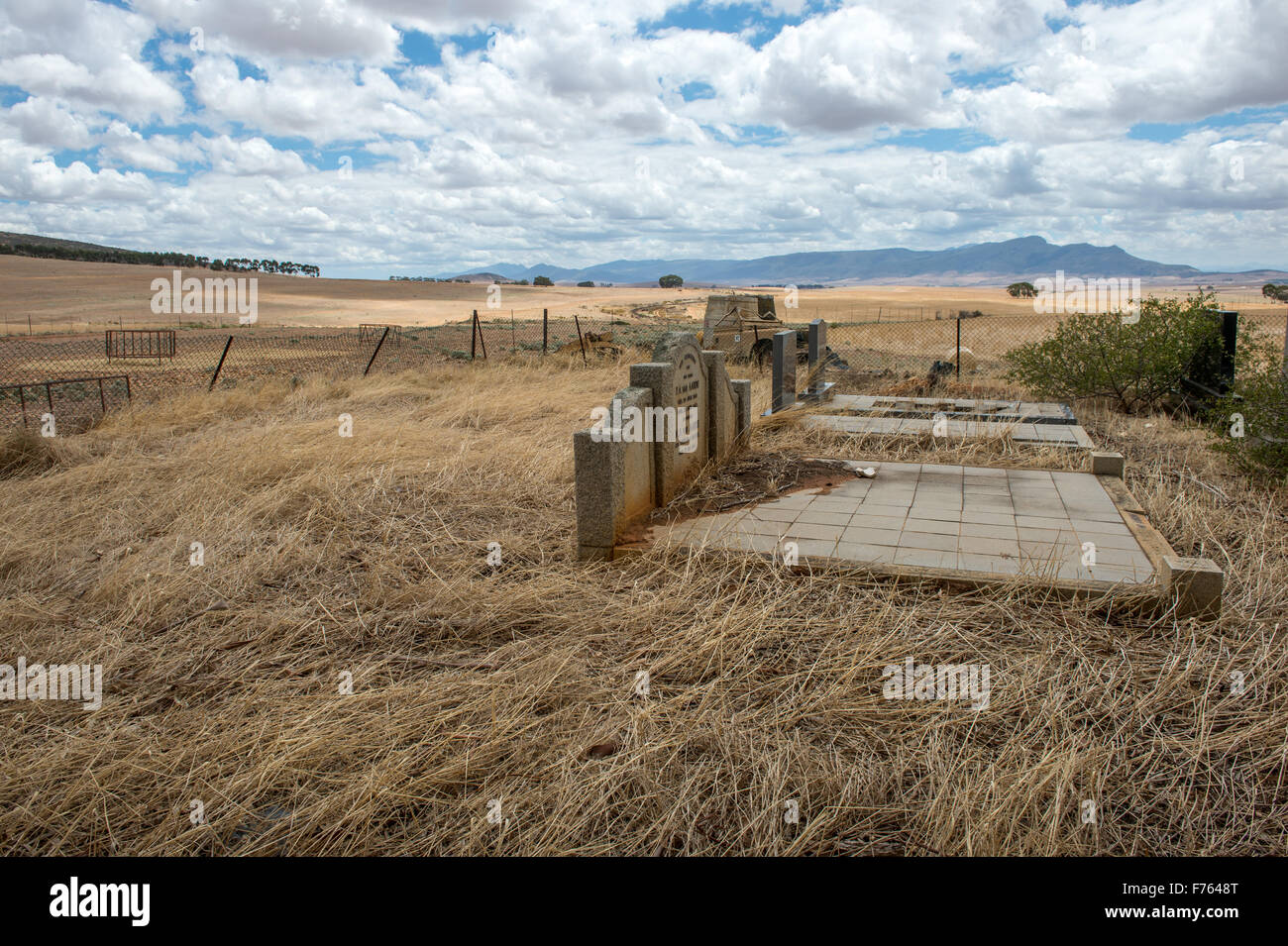 tombstones in a field in South Africa - Stock Image
