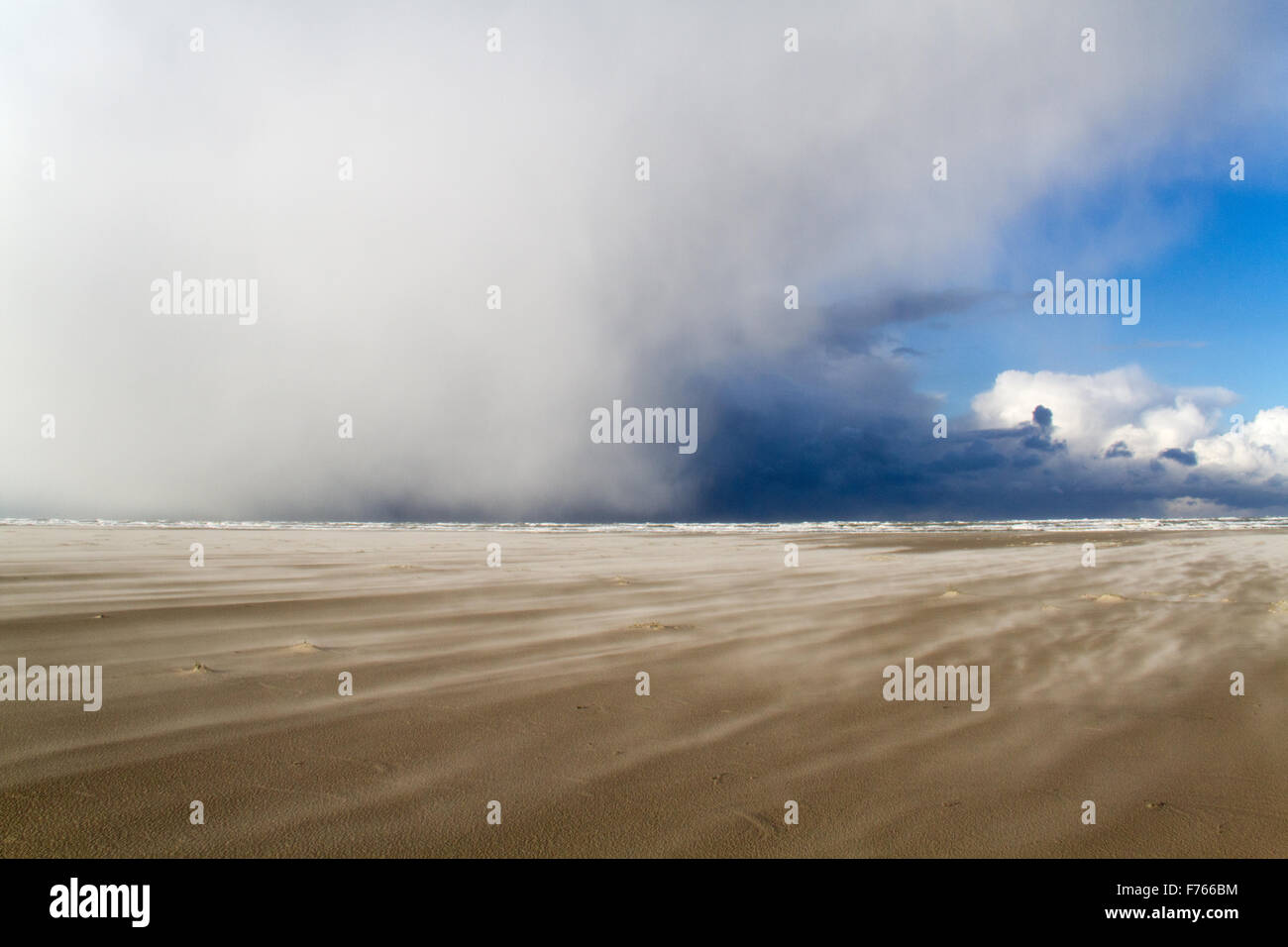 A wild day on the beach: a sandstorm and low clouds above the sea, bringing snow - Stock Image