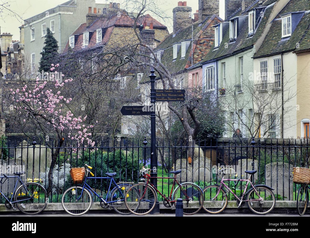 Locked student bicycles. Cambridge. Cambridgeshire. England. UK. Europe - Stock Image
