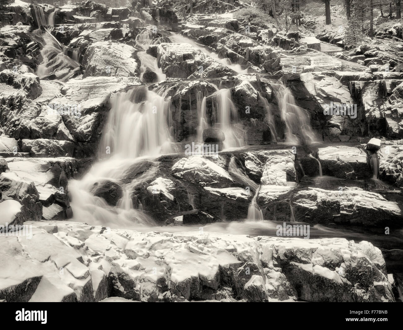 Glen Alpine Falls minutes after fresh snowfall. Lake Tahoe, California - Stock Image