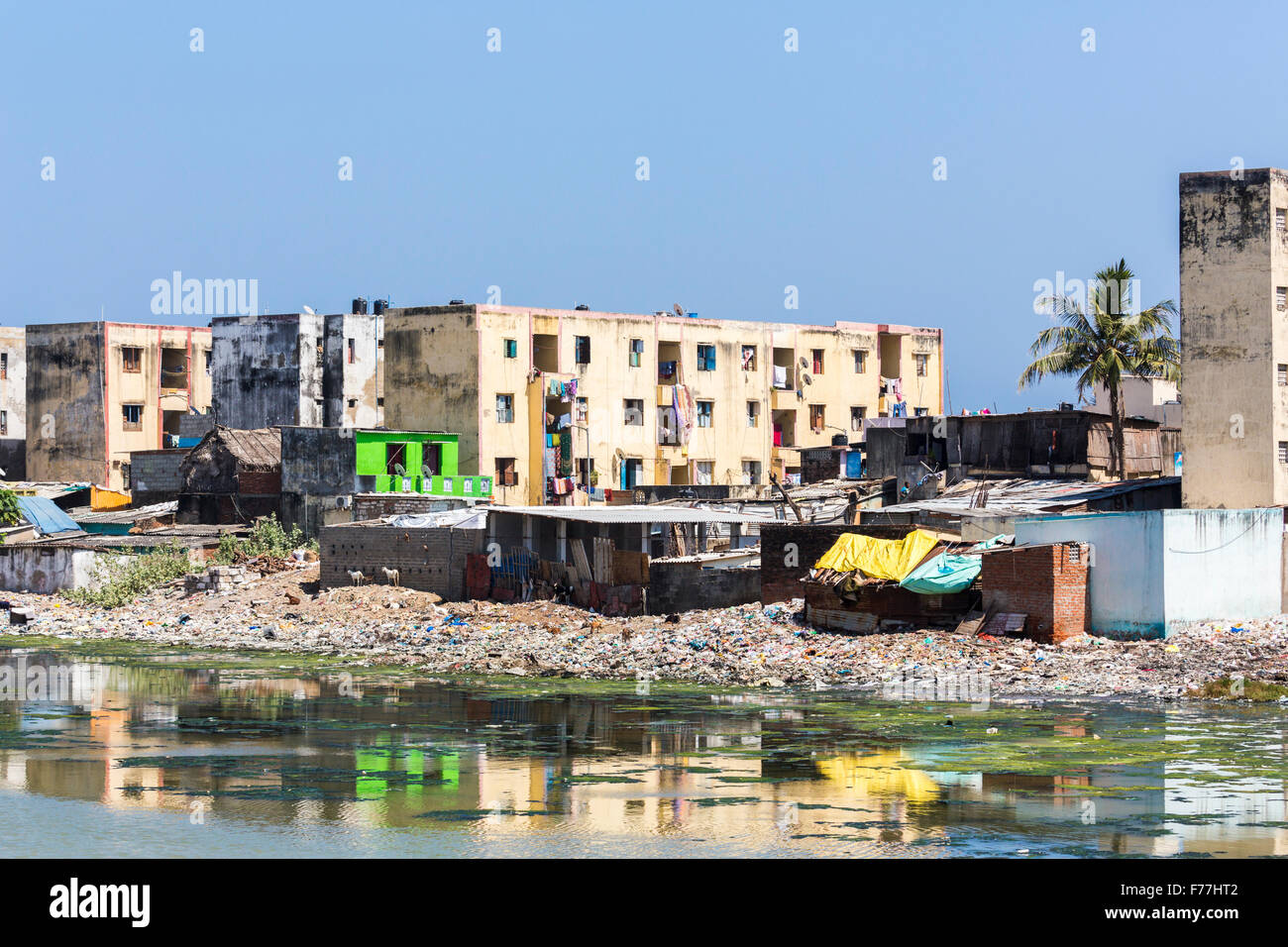 Third world poverty lifestyle: poor slums, apartment blocks on the banks of the polluted Adyar River estuary in - Stock Image