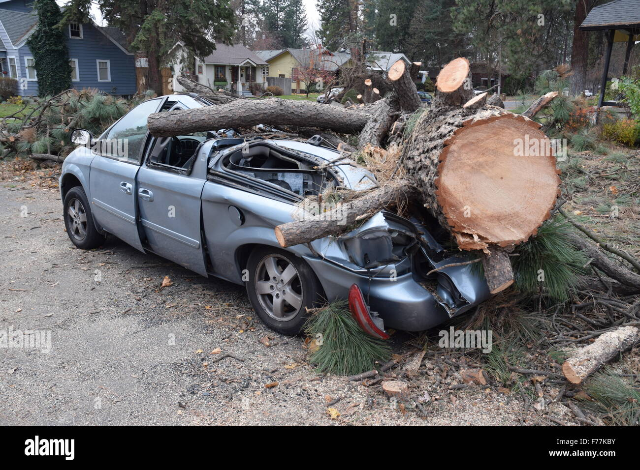 Crushed auto after storm. Stock Photo