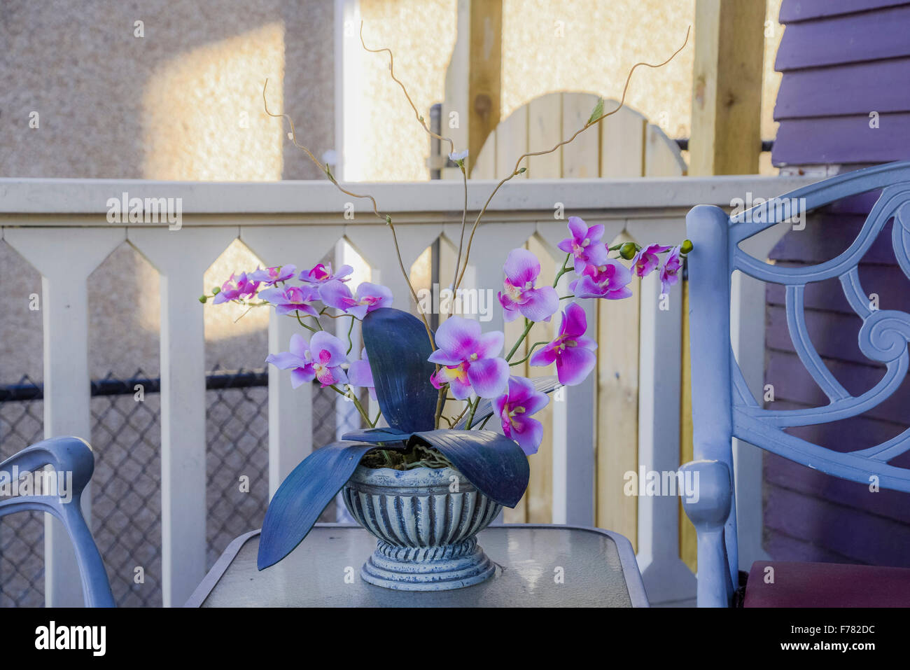 Plastic orchid in pot - Stock Image