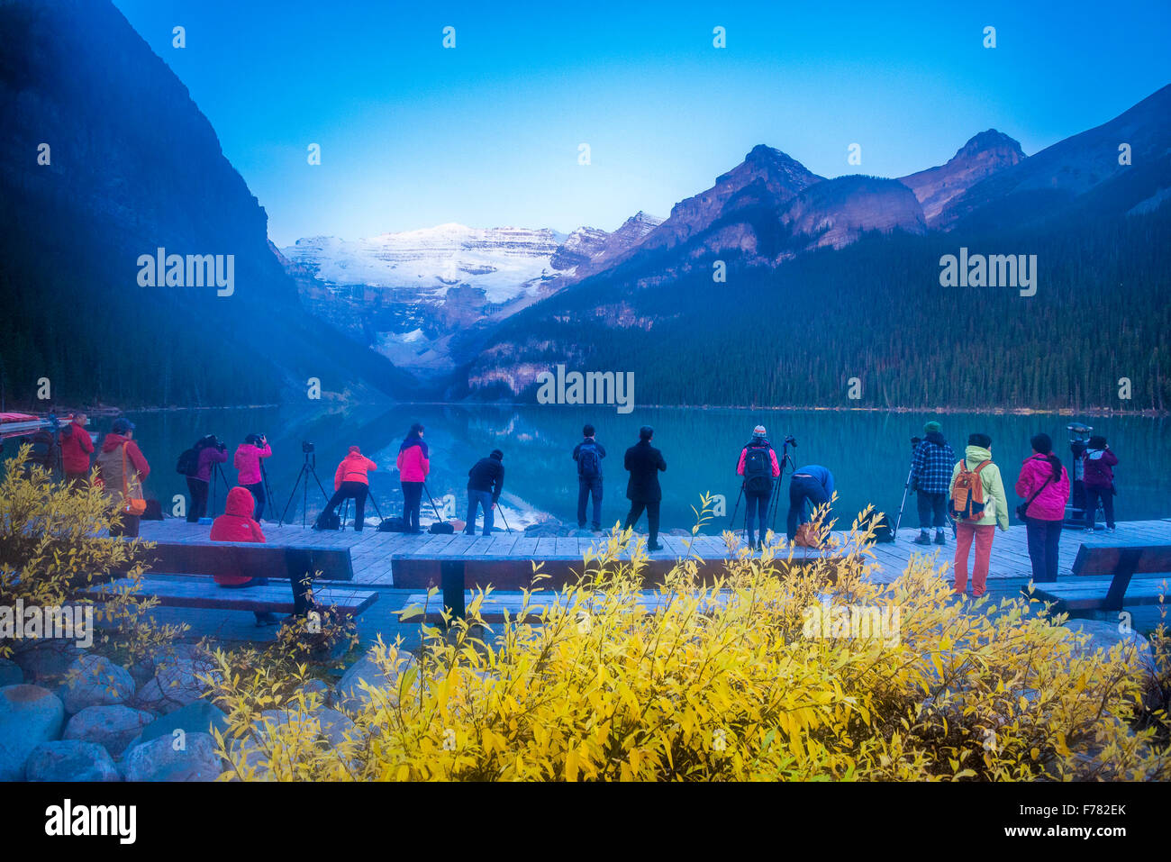 Photographers and tourists line-up at dawn, Lake Louise, Banff National Park, Alberta, Canada - Stock Image