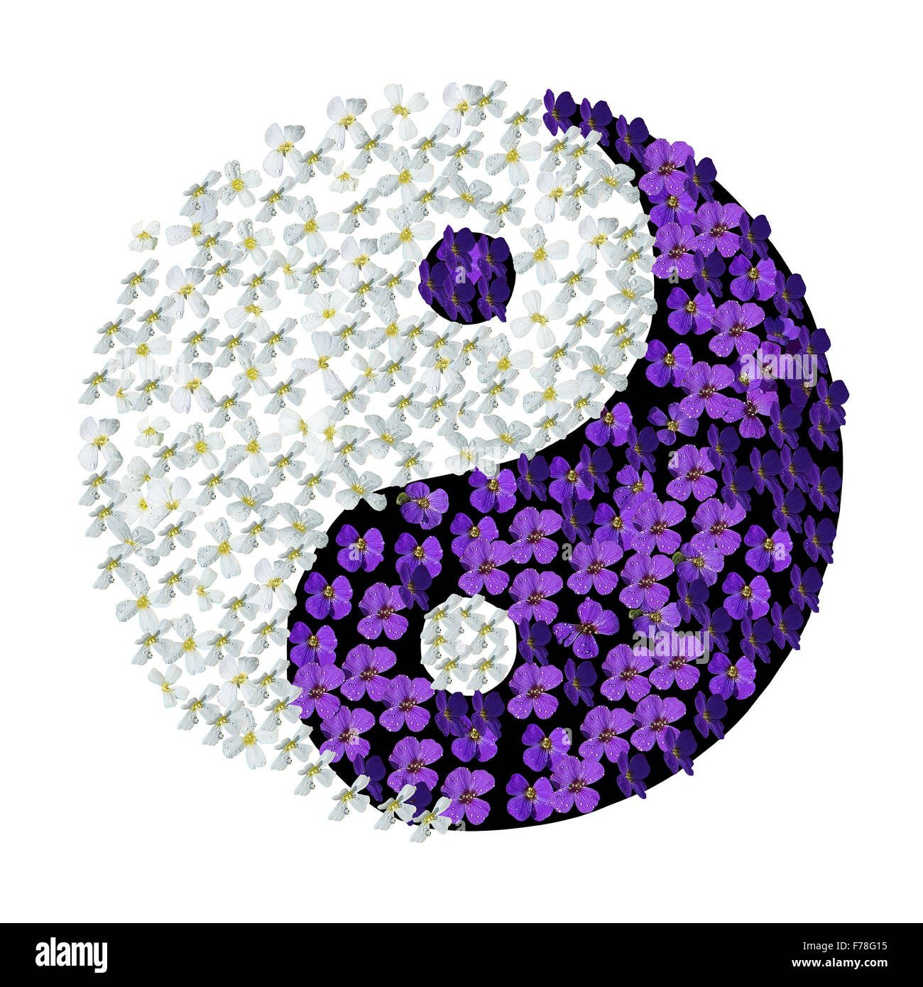 Floral Yin Yang Yin Yang Symbol With White And Purple Flowers With