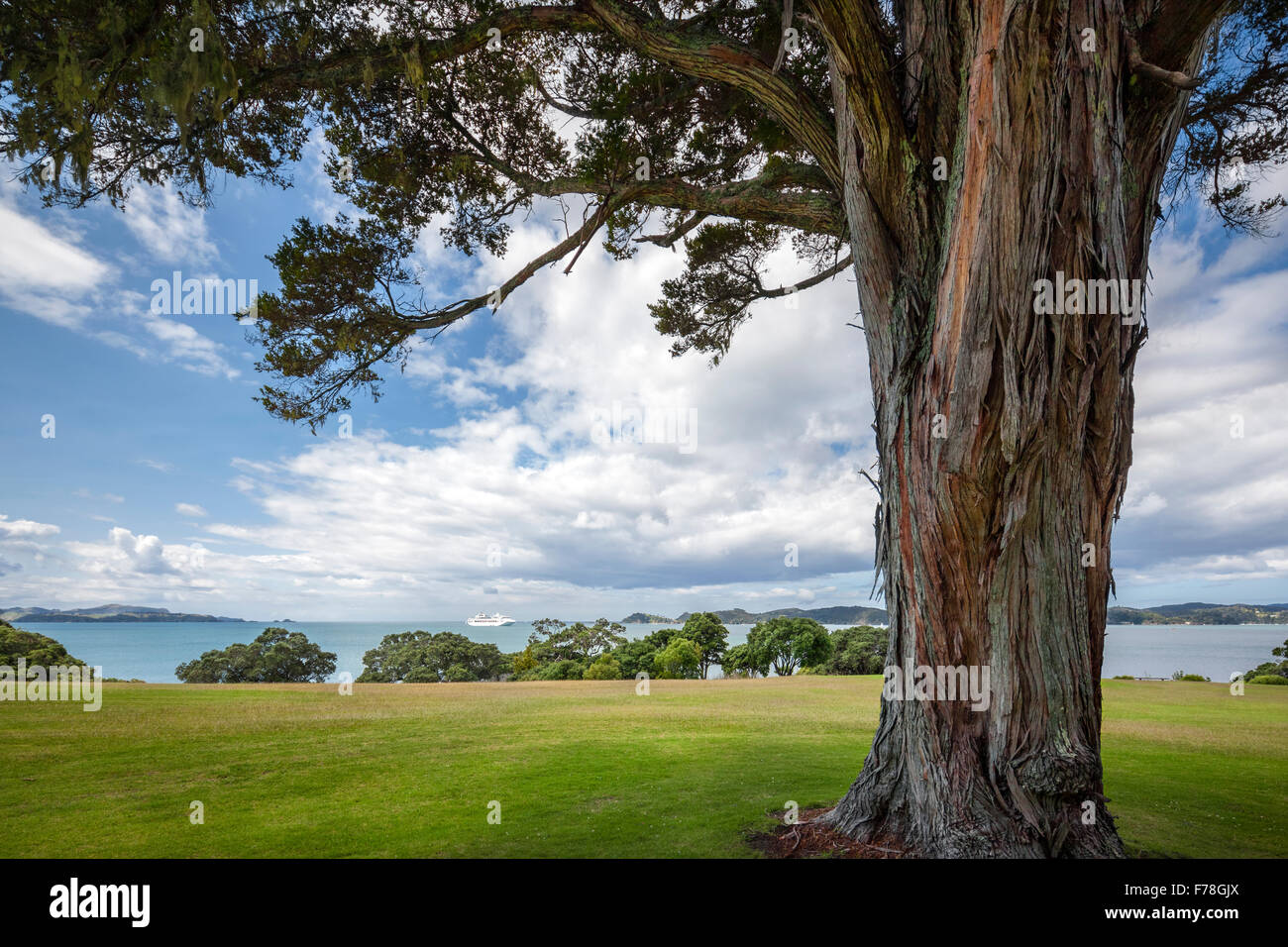 New Zealand. Waitangi Treaty Grounds and The Bay of Islands. Cruise ship luxury cruise liner in the bay. - Stock Image