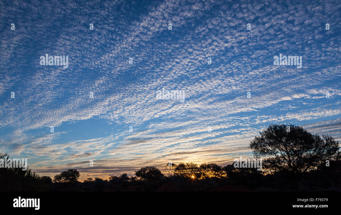 glorious evening sky over bushland east of Yalgoo, Murchison District, Mid West Western Australia - Stock Image