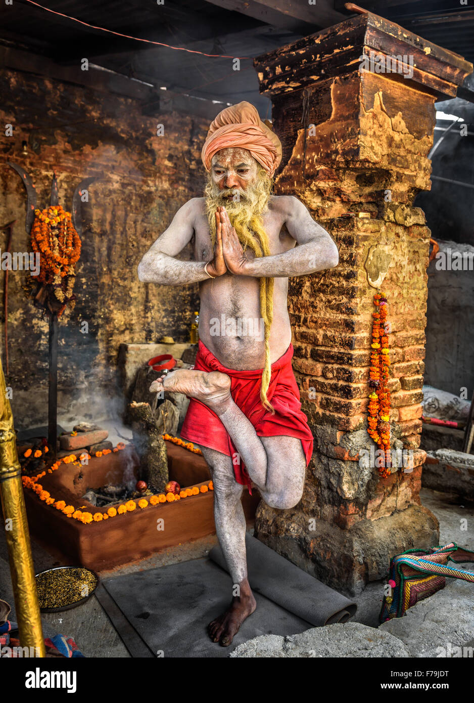 Shaiva sadhu (holy man) with traditional long beard exercises in Pashupatinath Temple - Stock Image