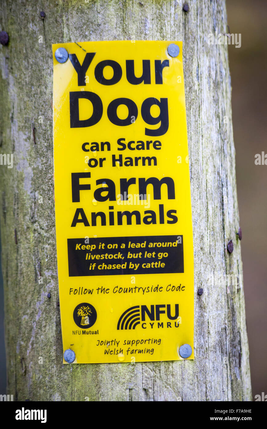 Your dog can scare or harm farm animals keep it on a lead around livestock but let go if chased by cattle sign - Stock Image