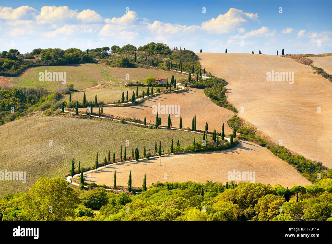 Road with cypresses, Tuscany, Italy Stock Photo