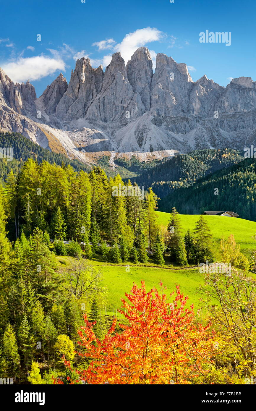 Val Di Funes in autumn colour, Tyrol, Dolomites Mountains, Alps, Italy - Stock Image