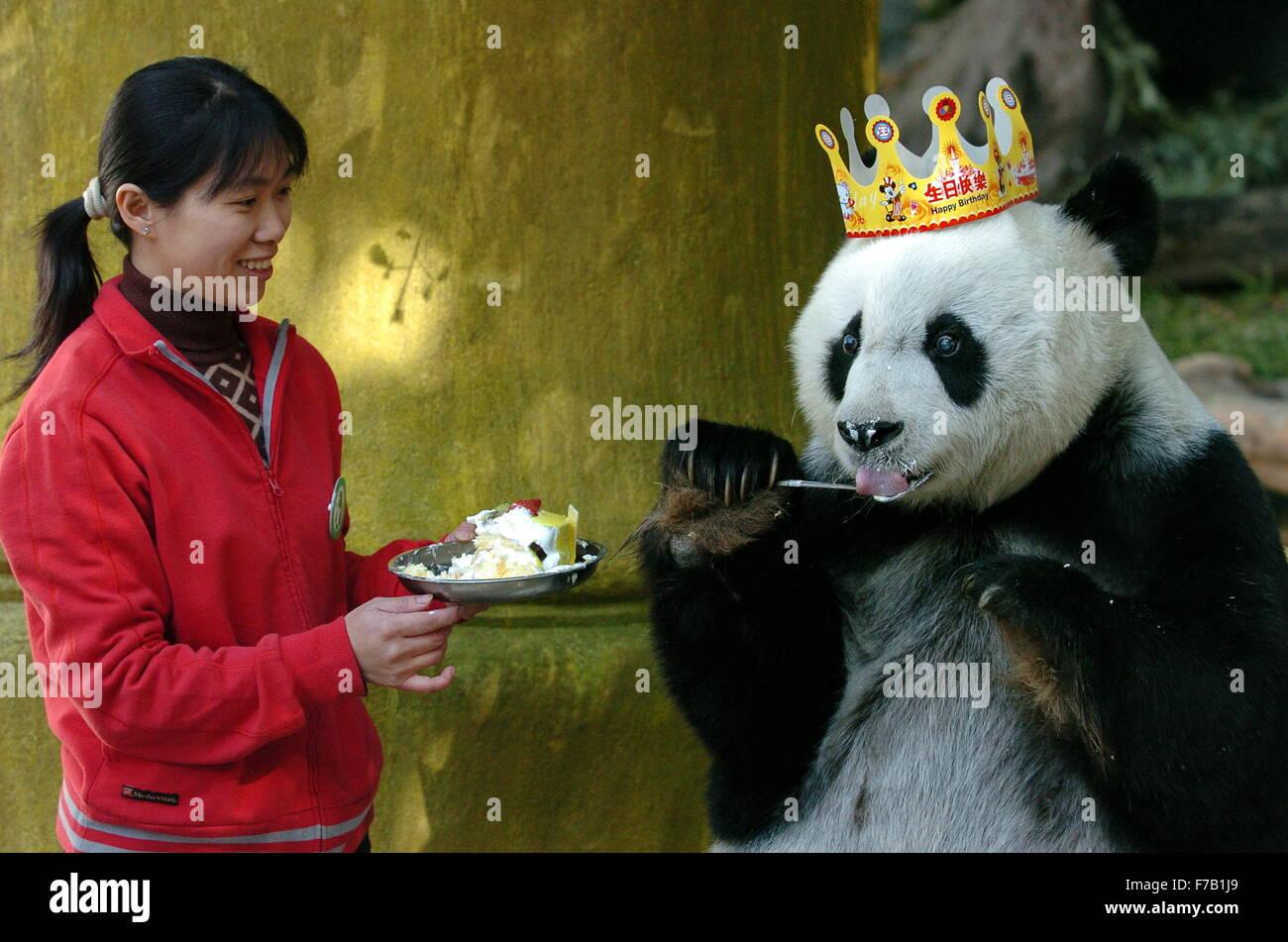 Giant Panda Eating In San Stock Photos Giant Panda Eating In San