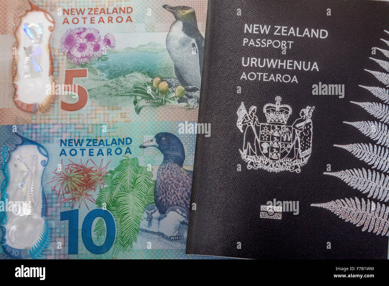 New updated five and ten kiwi dollar,  $5 and $10 New Zealand  NZD polymer bank notes and kiwi passport - Stock Image